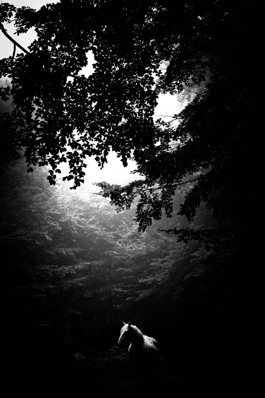 © Roberto Derensis - X-E2