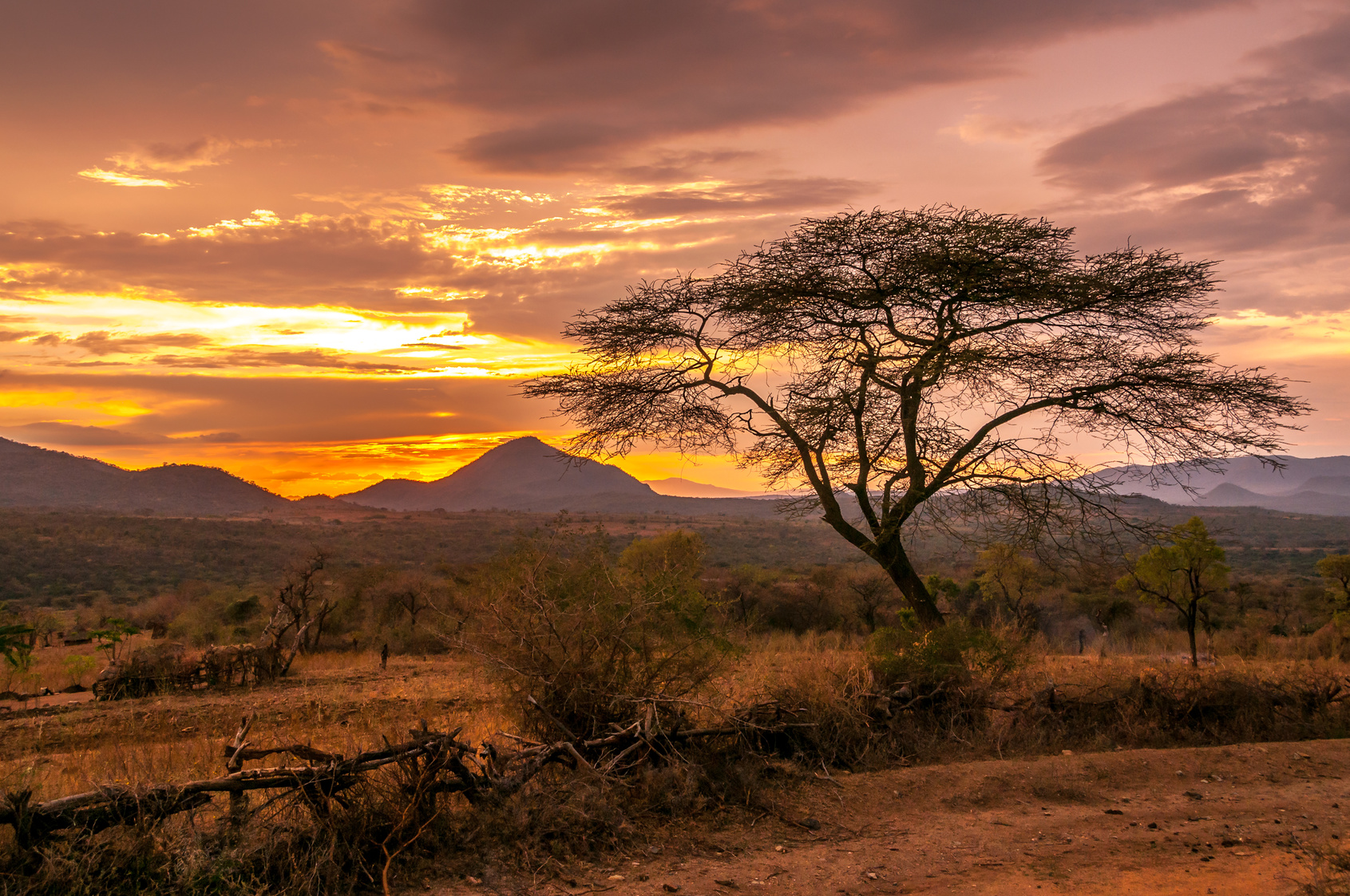 Riccardo Spatolisano: Viaggio fotografico in Dacalia – Etiopia dal 20-01-2018 al 29-01-2018