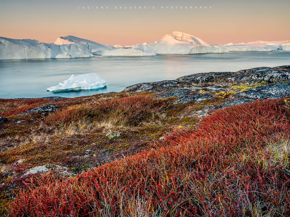 Luciano Gaudenzio: Dove danzano gli iceberg