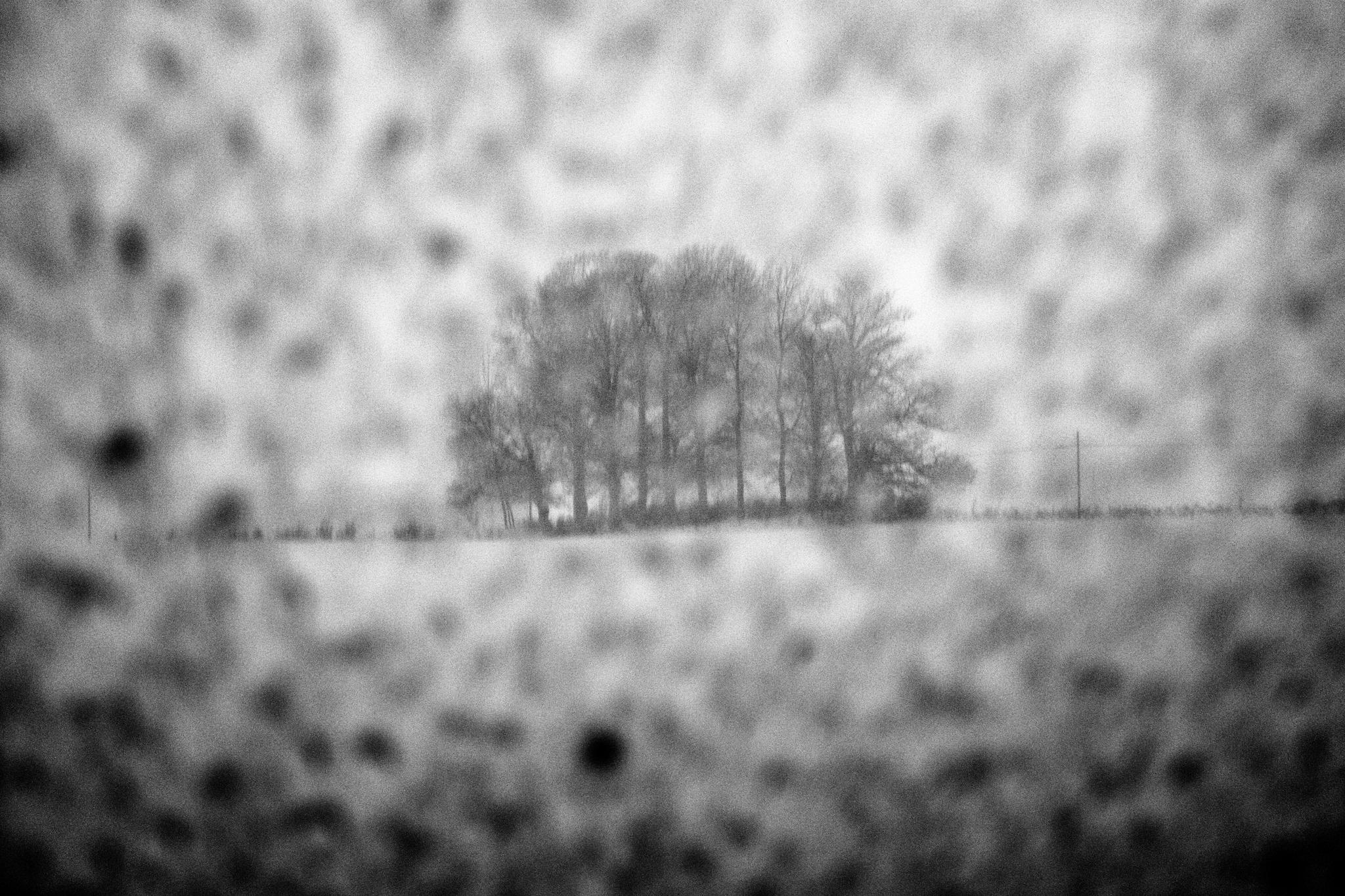 Marco Ascrizzi: Nevicata