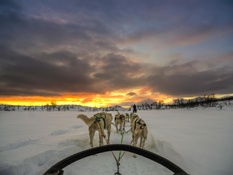 Simone Raso: al circolo polare artico con GFX 50S